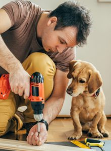 Man and dog at work